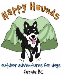 Happy Hounds adventures for dogs