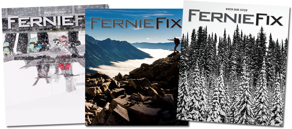 Ferniefix Winter and Summer Guides