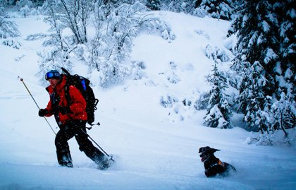 Fernie Ski Patrol, Canadian Avalanche Dog Association, Fernie Alpine Resort,